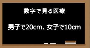 20150505 中学生の身長20cm10cm